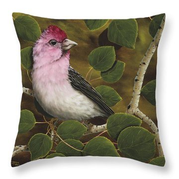Cassins Finch Throw Pillow by Rick Bainbridge