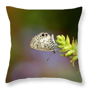 Cassius Blue Throw Pillow
