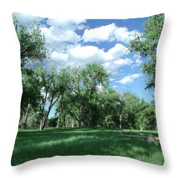 Casting Shadows Throw Pillow