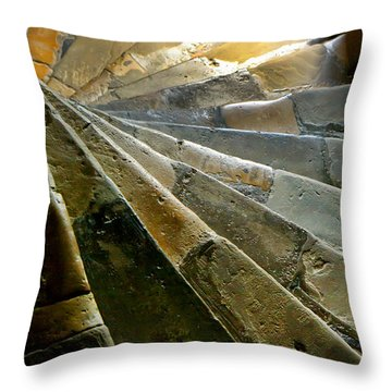 Castle Steps Throw Pillow