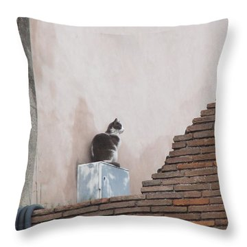 Throw Pillow featuring the photograph Cat Above The Roman Ruins by Tiffany Erdman