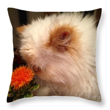 Cat And His Flower Throw Pillow by Carla Carson