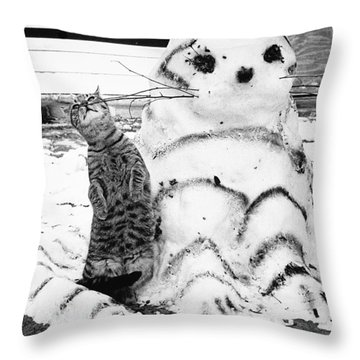 Cat And Snowcat Throw Pillow by Jack Rosen