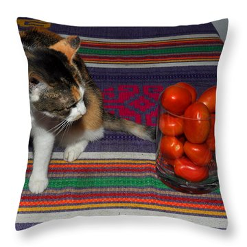 What Is That? Throw Pillow by Diane Lent