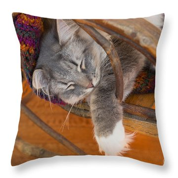 Cat Asleep In A Wooden Rocking Chair Throw Pillow by Louise Heusinkveld