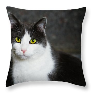 Cat Black And White With Green And Yellow Eyes Throw Pillow by Matthias Hauser