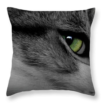 Cat Eye Throw Pillow by AR Annahita