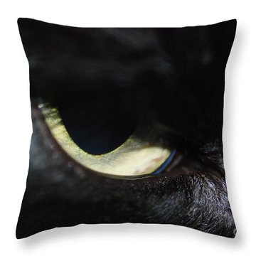 Cat Eye Throw Pillow