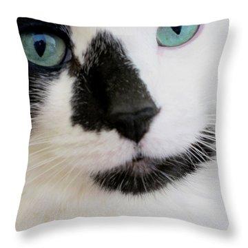 Cat Eyes Throw Pillow by Birgit Tyrrell