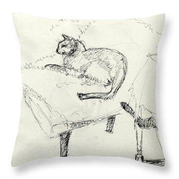 Cat Heaven Throw Pillow