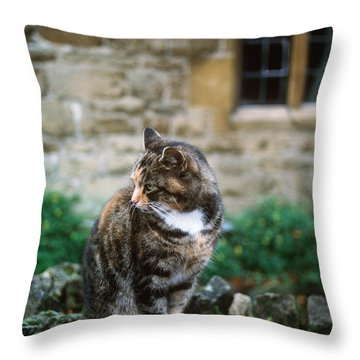 Cat In England Throw Pillow by James L. Amos