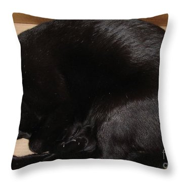 Throw Pillow featuring the photograph Cat In The Box by Kerri Mortenson