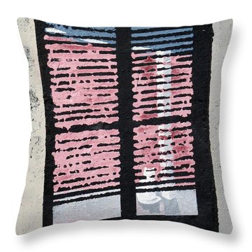 Cat N Window Throw Pillow