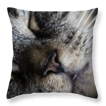 Cat Nap Throw Pillow by Andrew Pacheco