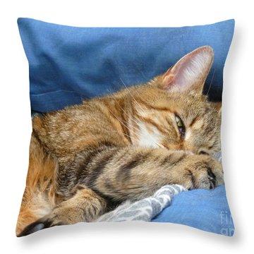 Throw Pillow featuring the photograph Cat Nap by Lingfai Leung