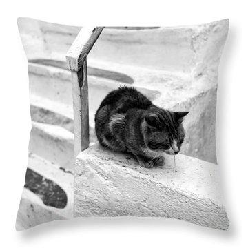 Cat Napping Mono Throw Pillow by John Rizzuto