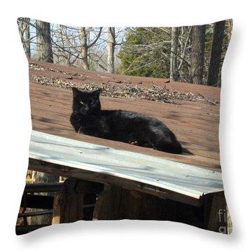 Cat On A Tin Roof Throw Pillow