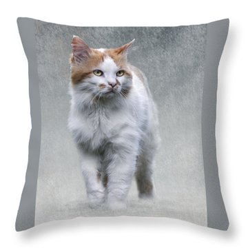 Cat On Texture - 01 Throw Pillow