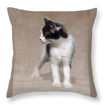 Cat On Texture - 03 Throw Pillow