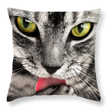 Throw Pillow featuring the photograph Cat by Paul Fearn