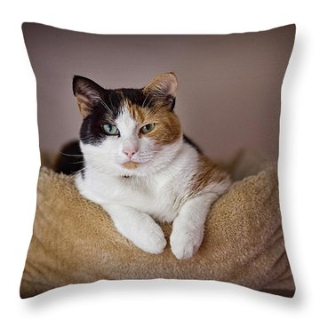 Cat Portrait Throw Pillow