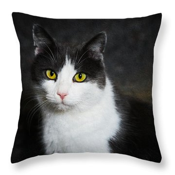 Cat Portrait With Texture Throw Pillow