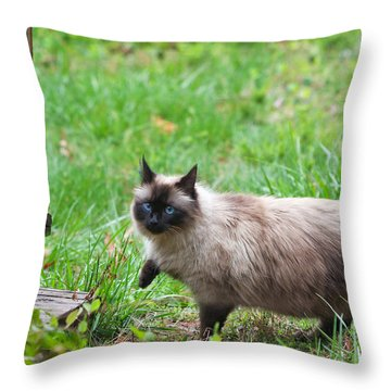 Cat Walking Throw Pillow