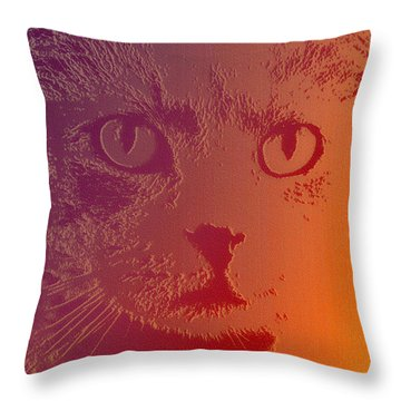 Throw Pillow featuring the photograph Cat With Intense Stare Abstract  by Denise Beverly