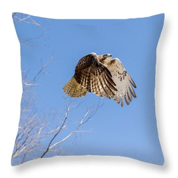 Catching The Sun Throw Pillow by Bill Wakeley