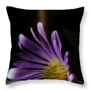 Catching The Sun's Rays Throw Pillow by Barbara St Jean
