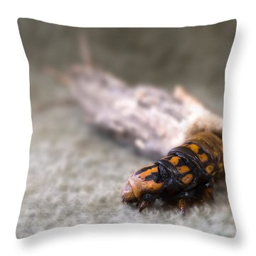 Throw Pillow featuring the digital art Caterpillar 0001 by Kevin Chippindall