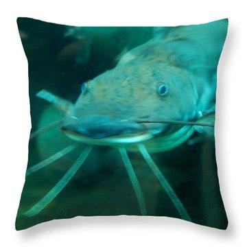 Catfish Billy Throw Pillow