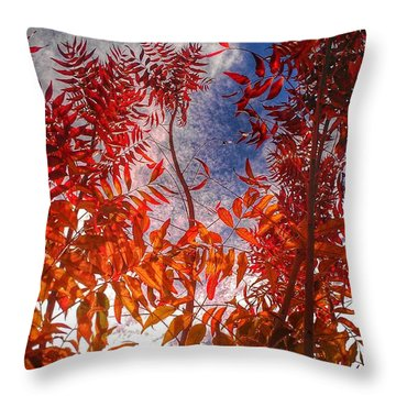 Catharsis Throw Pillow by CML Brown