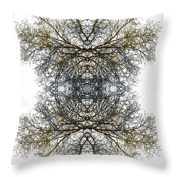 Cathedral Glass Throw Pillow by Debra and Dave Vanderlaan