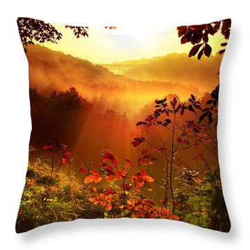 Cathedral Of Light Throw Pillow