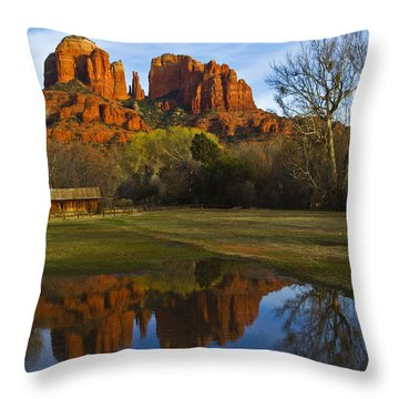Cathedral Throw Pillow by Tom Kelly