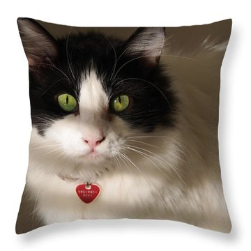 Throw Pillow featuring the photograph Cat's Eye by Karen Zuk Rosenblatt