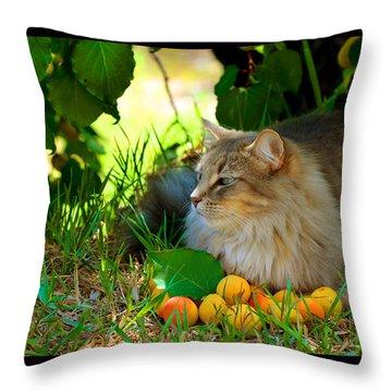 Cat's Mountain Summer Throw Pillow by Susanne Still