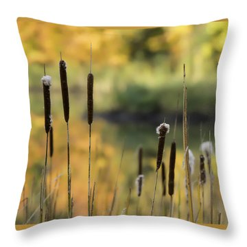 Cattails And Colors Throw Pillow