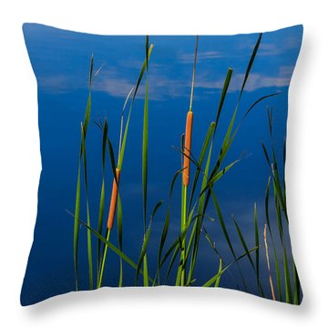 Cattails At Overholster Throw Pillow by Doug Long