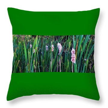 Throw Pillow featuring the photograph Cattails by Daniel Thompson