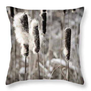 Cattails In Winter Throw Pillow by Elena Elisseeva