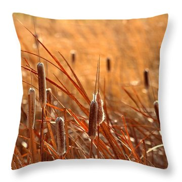 Throw Pillow featuring the photograph Cattails  by Lynn Hopwood