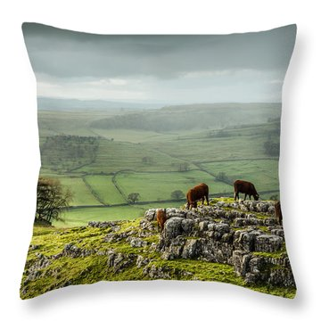 Cattle In The Yorkshire Dales Throw Pillow