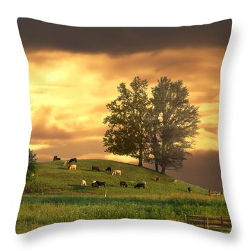 Cattle On A Hill Throw Pillow