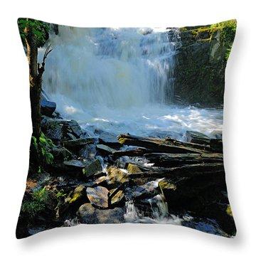 Cattyman Falls 2 Throw Pillow by Larry Ricker