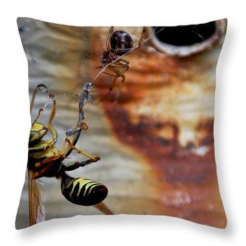 #caught Throw Pillow by Becky Furgason
