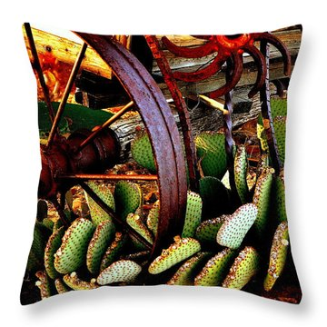 Throw Pillow featuring the photograph Caught In A Cactus Patch-sold by Antonia Citrino