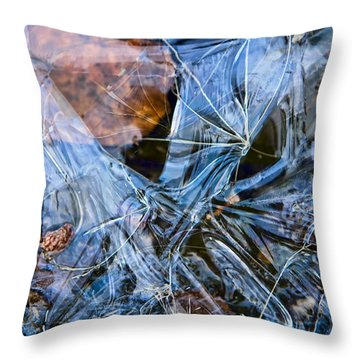 Caught In Ice Throw Pillow