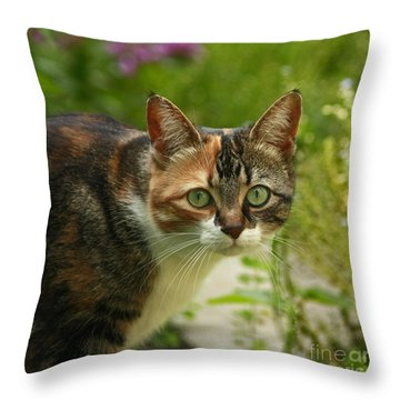 Caught In The Act Throw Pillow by Inspired Nature Photography Fine Art Photography